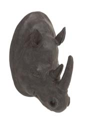 Watsonia Rhino Wall Trophy Head