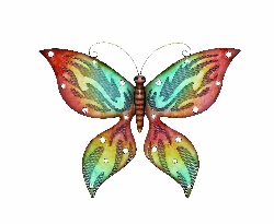 Jacen Vibrant Wall Butterfly 22x17
