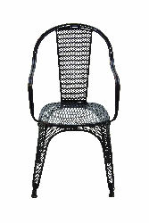 Taran Elegant & Vibrant Netted Black Chair