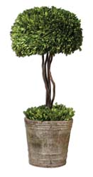 Uttermost 60095 Tree Topiary Preserved Boxwood