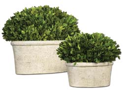 Uttermost 60107 Oval Domes Preserved Boxwood Set/2