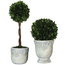 Uttermost 60112 Preserved Boxwood Ball Topiaries S/2