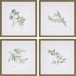 Herbs Pk/4 Wall Art