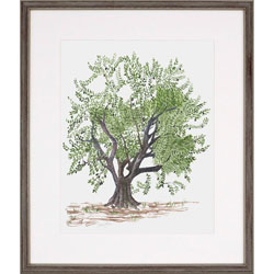 Olive Tree Wall Art