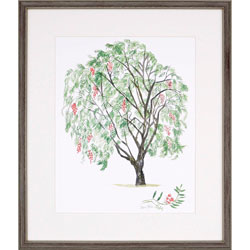 Pepper Tree Wall Art