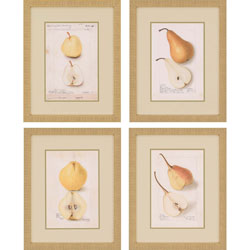 Poire I Pk/4 Wall Art