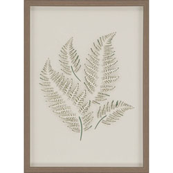 Fern 1 Wall Art