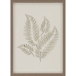Fern 2 Wall Art