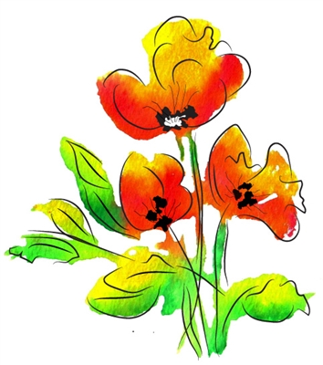 watercolor poppies  - 719