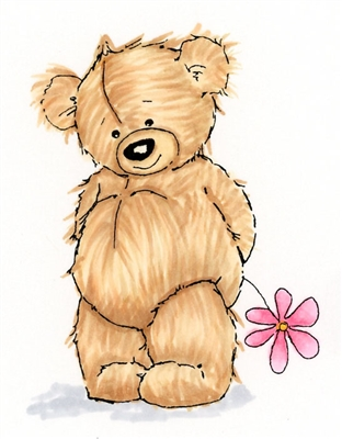 Teddy Bear 895-05