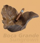 Boca Grande Sun Grown Tobacco Leaf Ashtray