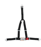 4-Point Latch & Link Restraint