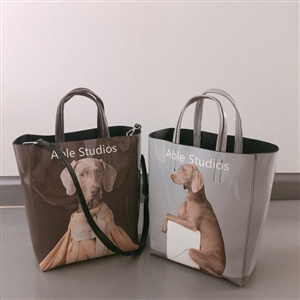 Doggy Tote (Brown/SkyBlue) (will ship within 1~2 weeks)