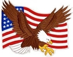 Eagle US Flag BACK PATCH