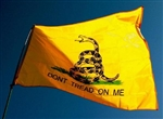 VIEW The Gadsden Flag