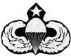VIEW Senior Parachutist Wings Patch
