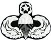 VIEW Master Parachutist Wings Patch