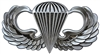 VIEW Basic Parachutist Badge