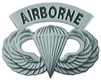 VIEW Airborne Wings Lapel Pin