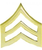 Enlisted E-5 Army <!20>Sergeant (SGT) PIN