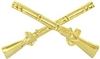 VIEW Infantry Crossed Rifles Branch Insignia