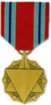 VIEW AF Combat Readiness Medal