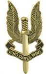 VIEW Special Air Service Lapel Pin