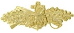 VIEW US Navy Seabees Combat Warfare Specialist Badge