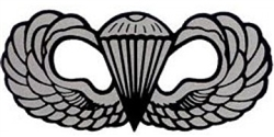 VIEW Basic Parachutist Badge Window Sticker