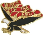 VIEW 101st Avn Bn Hat Pin