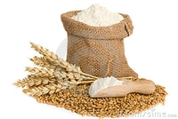 Organic Hard White Wheat Flour