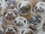SMILING SEA LIONS