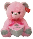 10 inch PINK Bear with Silver and Pink Embroidered Heart Box