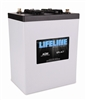 Lifeline GPL-6CT AGM Marine & RV Battery