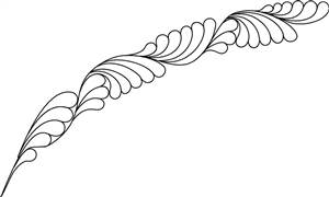 SH Ribbon Feather