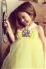 Pale Yellow Tutu Dress