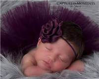 simply plum headband