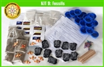 SS-925-1109 Kit 9: Fossils