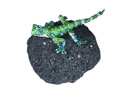 Pin - Lizard Lime/Aqua
