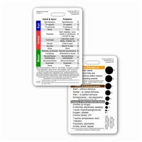 Glasgow Coma Scale (GCS) Vertical Badge Card