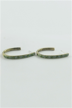 Crystal Accent Hoop Earrings E1718