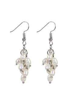 Charming Beaded Pearl Drop Hanging Earrings E2073