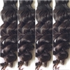 Malaysian Doll * Natural* (Bundle)