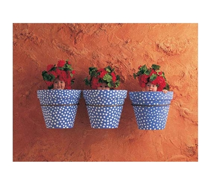 Mediterranean Pots - Anne Geddes Poster Sure To Make Students Smile Through Tough Days At College