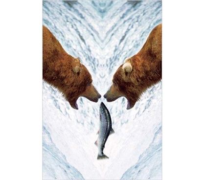 Posters For College - Two Bears For One Fish Poster - College Dorm Room Staples