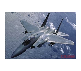 Decorate Your College Dorm Room - F-15 Eagle Poster - Cool College Wall Decor