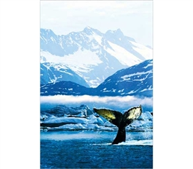 Nature Poster For Dorms - Humpback Whale Poster - Decorate Your College Dorm