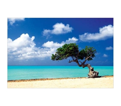 Must Have College Supplies - Caribbean Zen Moment Poster - Posters For College