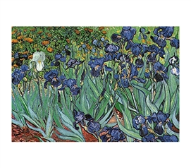 Flower Irises - Van Gogh Colorful Poster