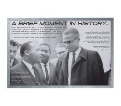 MLK Famous American - African American History Must Have Poster